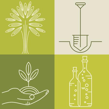 logo de comida: Conjunto de insignias de aceite de oliva para la cosm�tica org�nica dise�o, la comida sana y el nombre de la empresa. Iconos planos