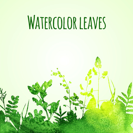 Watercolor summer leaves on background Vector