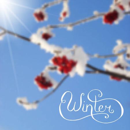 lens brush: White lettering on blurred photo background