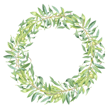 Green watercolor olive branch frame on white background Иллюстрация