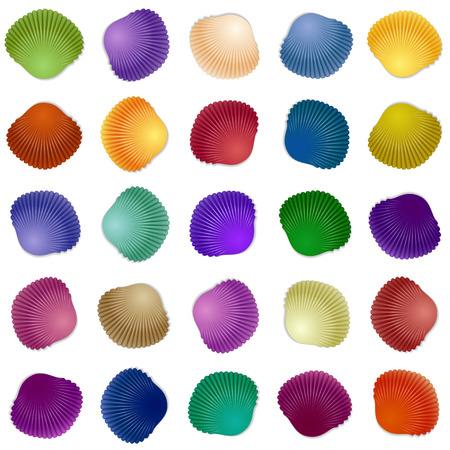noix saint jacques: Seamless fond coloré de modèle de coquillage. Vector illustration pour votre conception Illustration