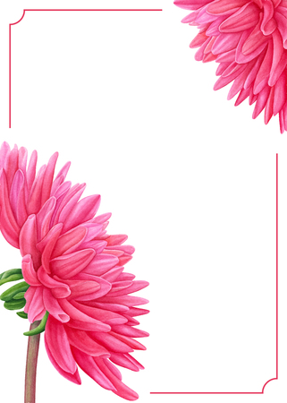 Watercolor Pink Dahlia Botanical Art Template For A Business