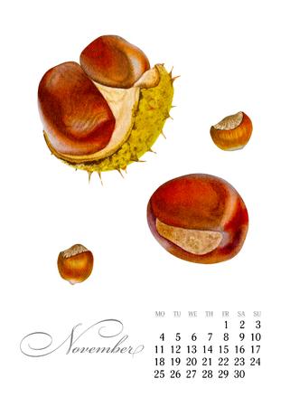 Elegant printable calendar 2019. November. Watercolor chestnuts. Botanical art. Template for a banner, notebook, cosmetics, perfume or invitation Stock Photo