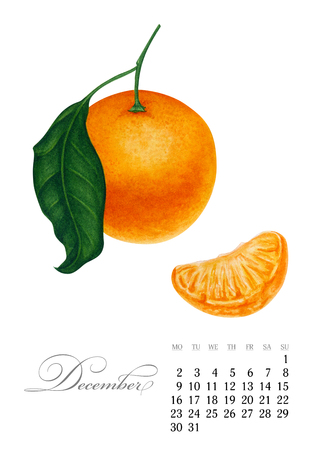 Elegant printable calendar 2019. December. Watercolor Mandarin. Botanical art. Template for a banner, notebook, cosmetics, perfume or invitation