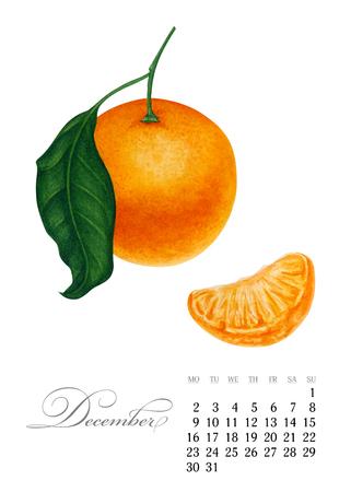 Elegant printable calendar 2019. December. Watercolor Mandarin. Botanical art. Template for a banner, notebook, cosmetics, perfume or invitation