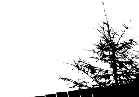 Black fir tree and fence silhouette. Card with copy space. Isolated on white background. Vector nature illustration Ilustração