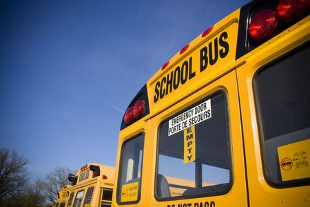 School buses from behind photo