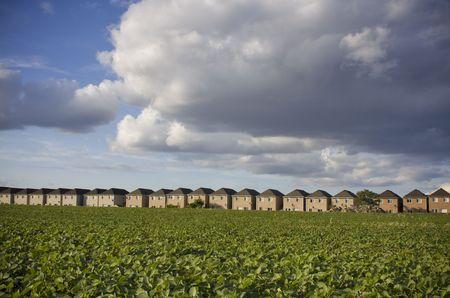 encroach: Housing development encroaching on natural land