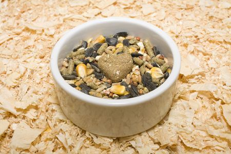 Hamster food with heart shaped treat in the middle of bowl on a background of shacings