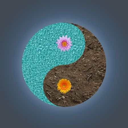 Yin-yang abstract nature concept Stock Photo - 4654085