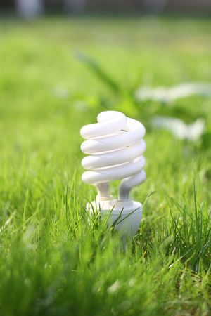 light bulb on a grass