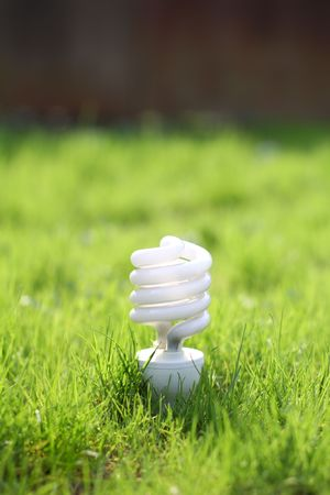 light bulb on a grass Stock Photo - 6837060