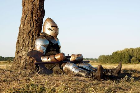 roundtable: Medieval knight in the field with an axe Stock Photo