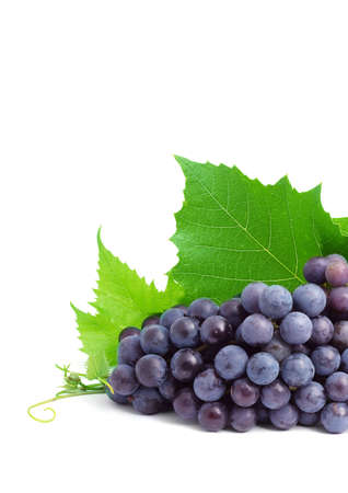 Bunch of fresh grapes isolated on white   photo