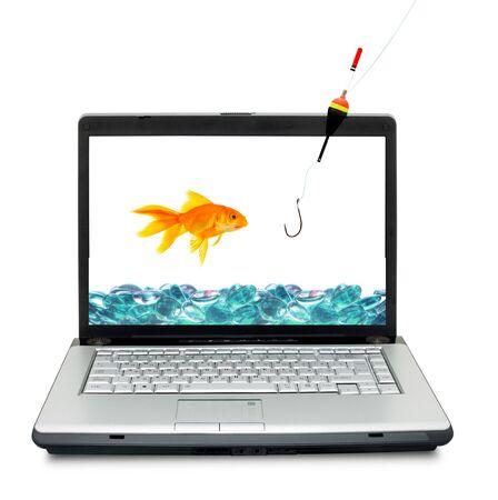 Goldfish in aquarium  isolated on a white background photo