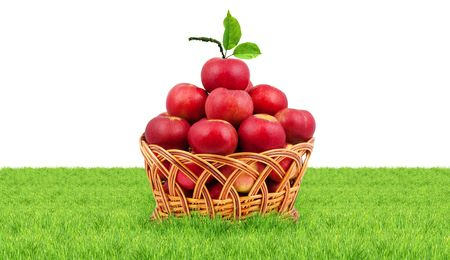 Basket of apples isolated on a white background photo