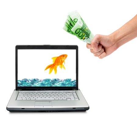 Goldfish in aquarium  isolated on a white background photo