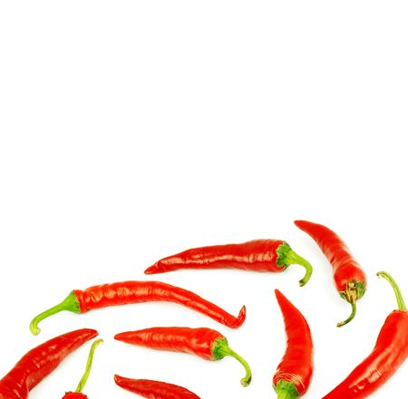 Close-up view of the red peppers isolated on a white background photo