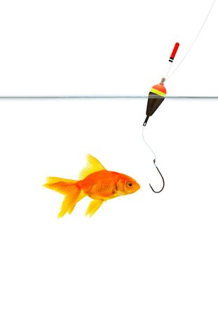 bobber: Fishing a goldfish. Shot in a studio