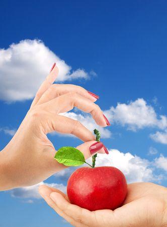 Chica da al hombre una manzana aislada en un fondo azul  Foto de archivo - 6257155