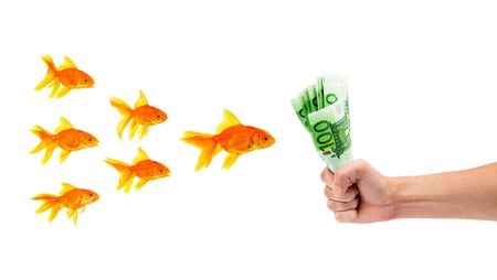 Goldfish with money on a white background Stock Photo - 6379700