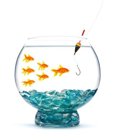 Goldfish in aquarium on white background photo