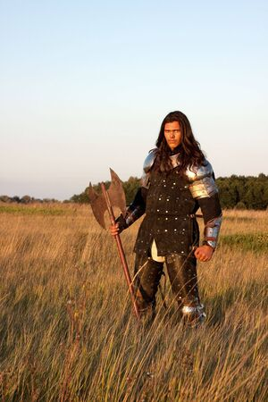 Medieval knight in the field with an axe Stock Photo - 6534930