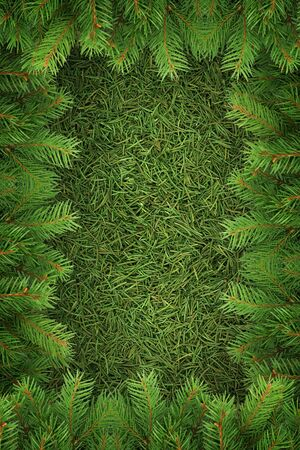 Christmas spruce  texture. Shot in a studio Stock Photo - 7527821