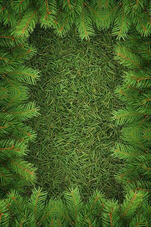 Christmas spruce  texture. Shot in a studio Фото со стока