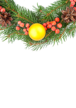 hollyberry: Christmas green  framework with cones and holly berry  isolated on white background Stock Photo