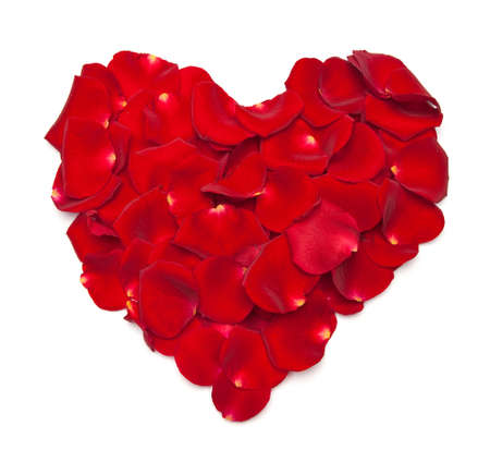 Heart shape made out of rose petals isolated on white Stock Photo - 8745089