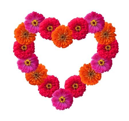haciendo el amor: Forma de corazón de pétalos de Rosa aislados en blanco
