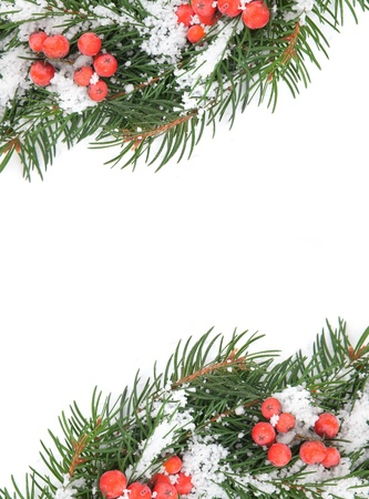 hollyberry: Christmas framework with snow and holly berry isolated on white background Stock Photo