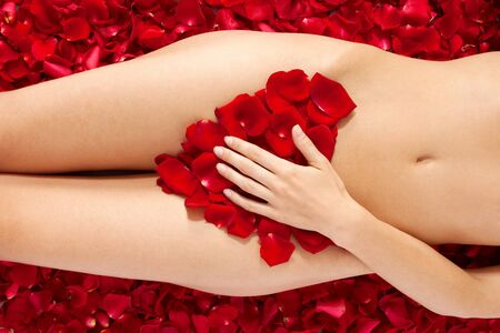 Beautiful body of woman against petals of red roses. Heart shape made out of rose petals Stock Photo - 9857593