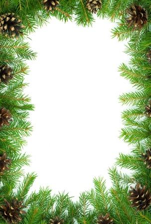 feuillage: No�l vert cadre isol� sur fond blanc Banque d'images