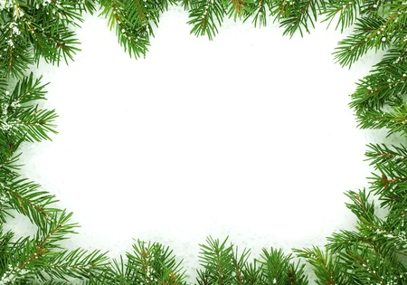 evergreen trees: Christmas framework with snow isolated on white background Stock Photo