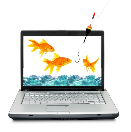 Goldfishes in laptop. Fishing,  isolated on a white background photo