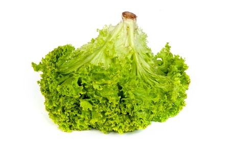 Fresh Green Lettuce isolated on a white background photo