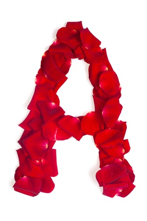 Alphabet letter A made from red petals rose isolated on a white background photo