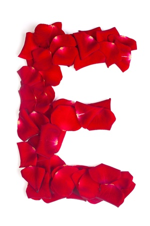 Alphabet letter E made from red petals rose isolated on a white background photo