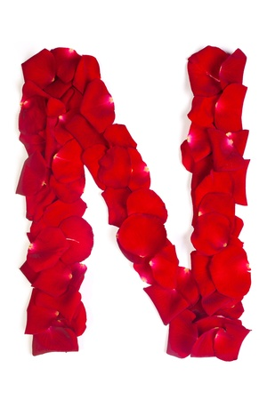 Alphabet letter N made from red petals rose isolated on a white background photo