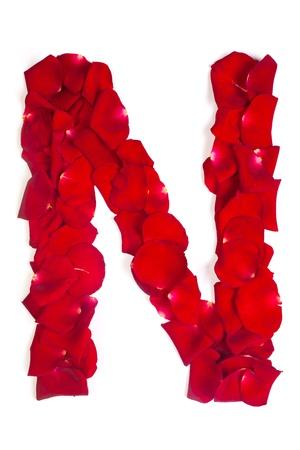 carta de amor: Letra del alfabeto N hecha de p�talos de rosa roja aislada en un fondo blanco Foto de archivo