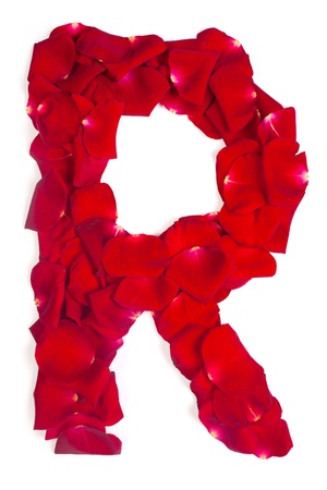 Alphabet letter R made from red petals rose isolated on a white background photo