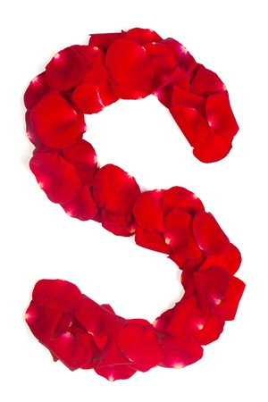 Alphabet letter S made from red petals rose isolated on a white background photo