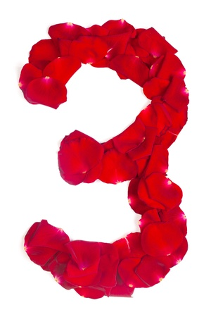 Alphabet number 3 made from red petals rose isolated on a white background photo