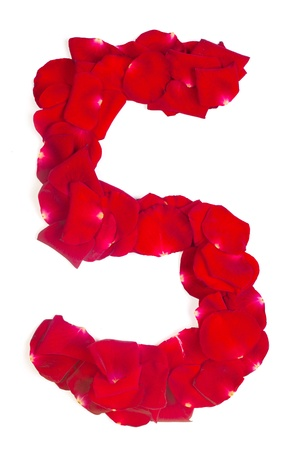 Alphabet number 5 made from red petals rose isolated on a white background photo
