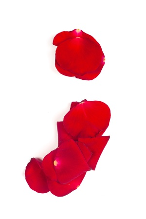 Punctuation alphabet mark  made from red petals rose isolated on a white background photo
