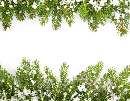 conifer: Christmas framework with snow isolated on white background Stock Photo