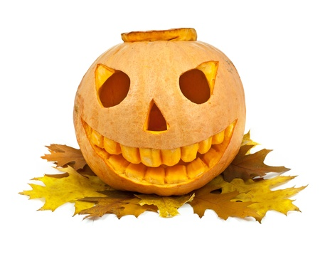 Halloween pumpkin and leaf isolated on a white background Stock Photo - 15441054