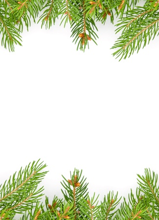 Christmas green framework isolated on white background Stock Photo - 15441015